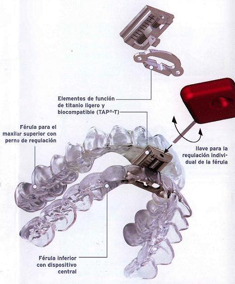 DAM (apnea, ronquido)